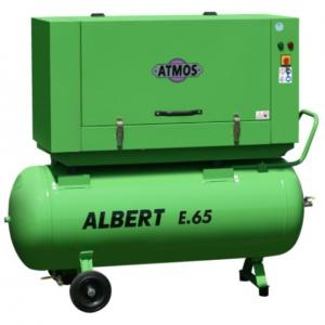 Albert E.65